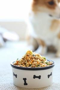 Turkey Veggie Dog Food Recipe