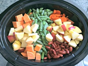 crockpot dog food recipes