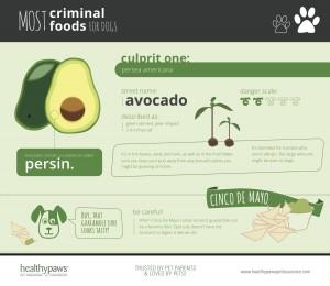 Criminal Foods Dogs Avocado