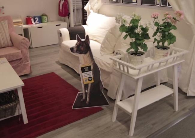 IKEA dog sign