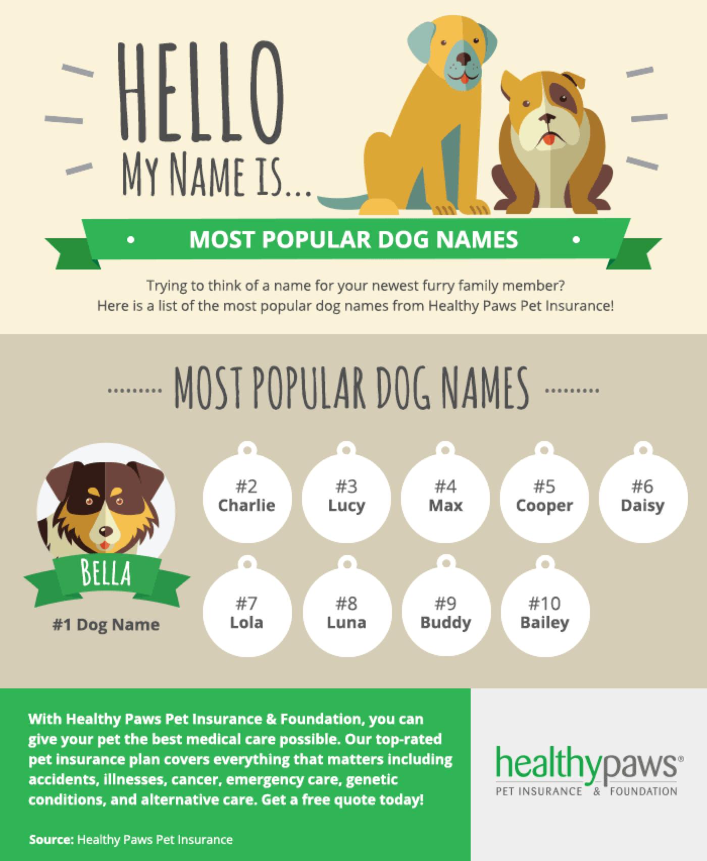 Most Popular Cute Dog Names