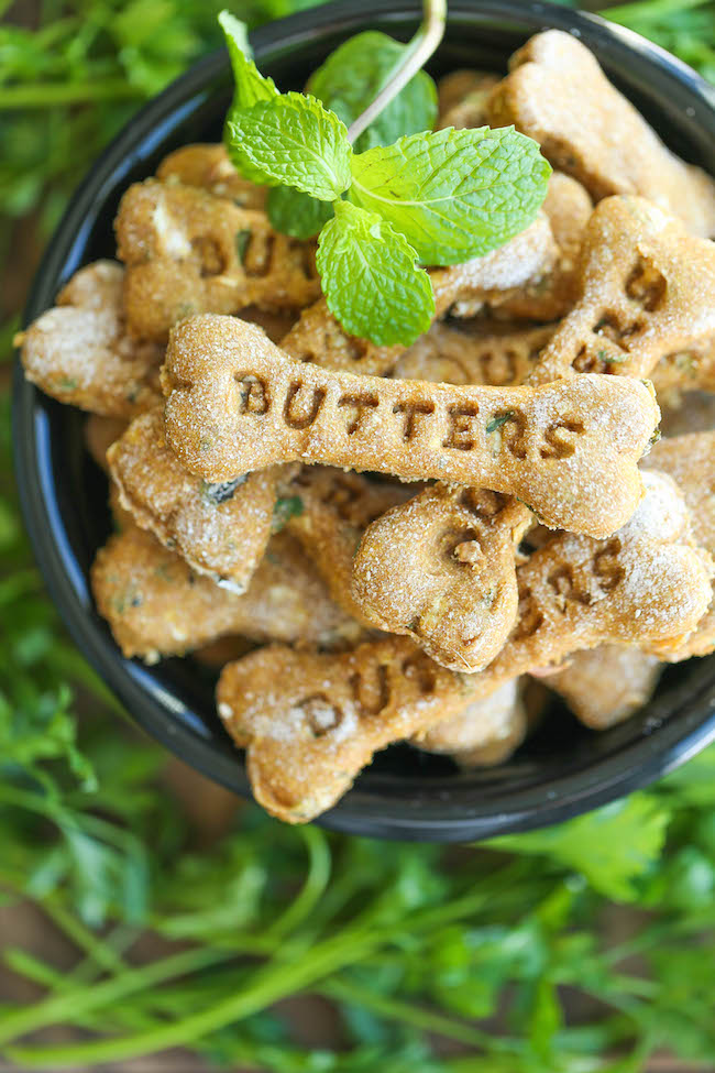 dog breath mint recipes