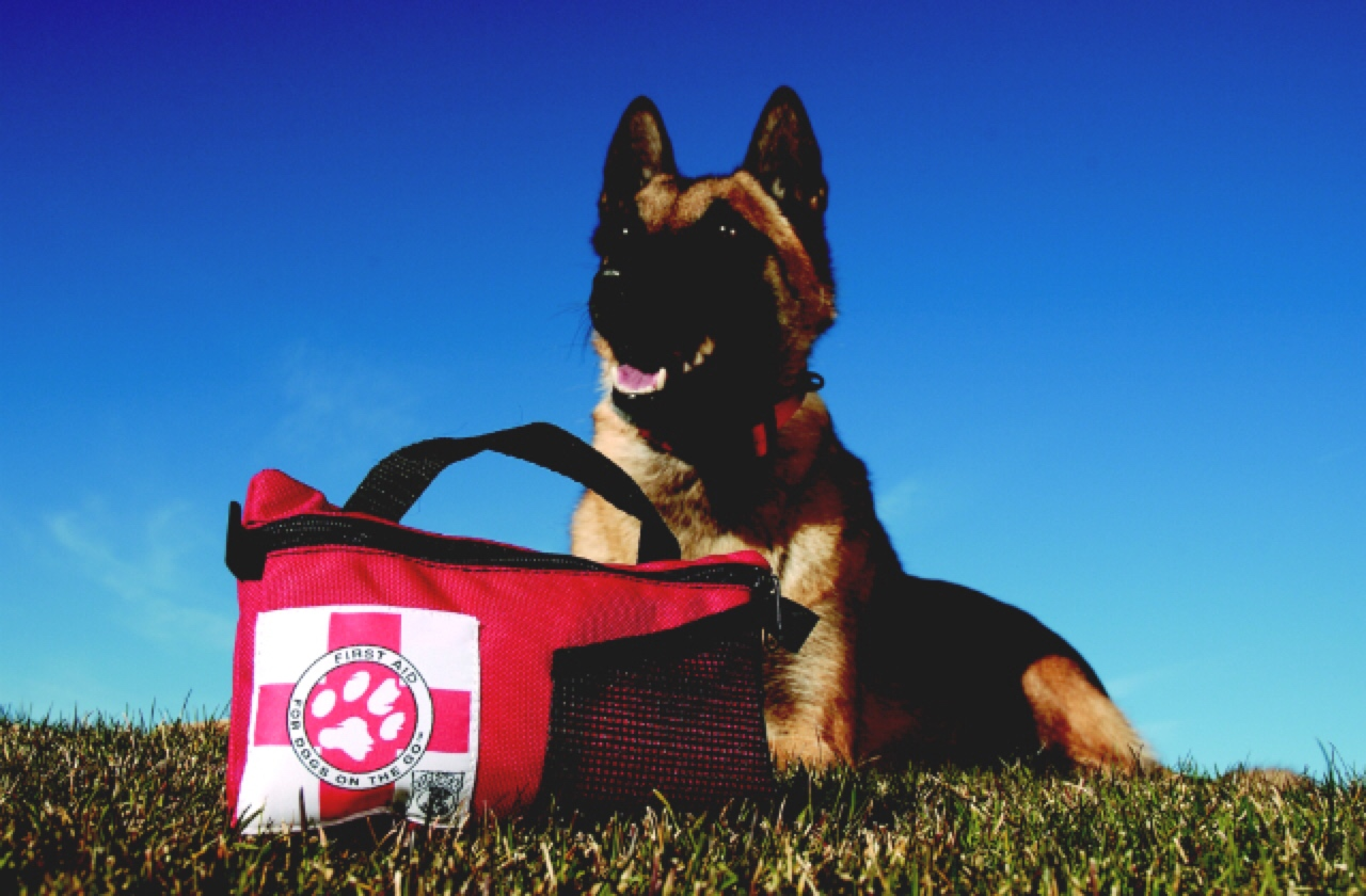 Basic First Aid Kit Your Pet First Aid Kit...