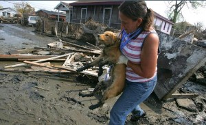 disaster and pet preparedness