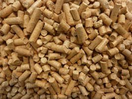 How To Use Pine Pellets As Cat Litter