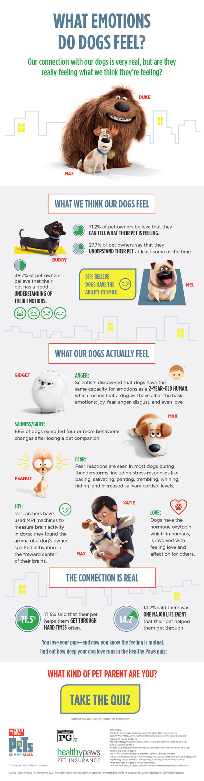 Healthy Paws Pet Insurance Reviews >> Emotions Dogs Feel [Infographic] | Healthy Paws