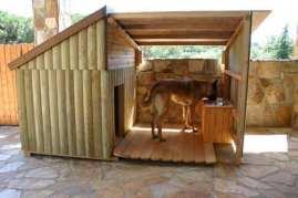 shepherd dog in custom dog house