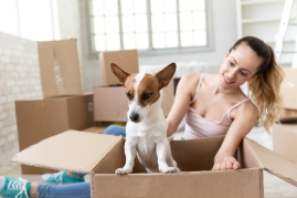 girl and dog with moving boxes