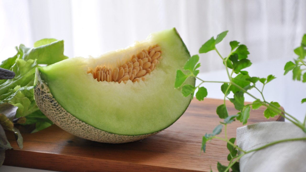 Can Dogs Eat Honeydew Melon? | Healthy