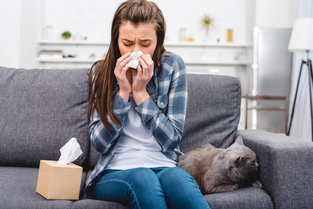 A New Weapon to Fight Allergies to Cats | Healthy Paws Pet ...