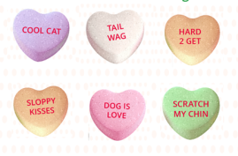 Hearts for pets