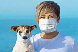 Dog coronavirus and person wearing face mask