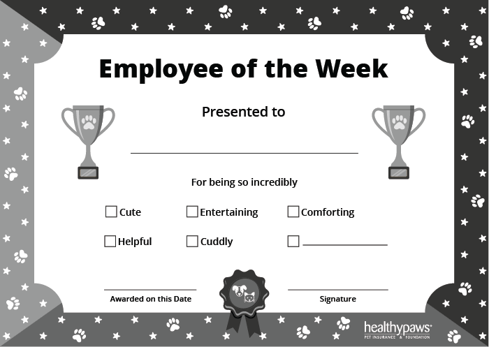 pet employee of the week certificate