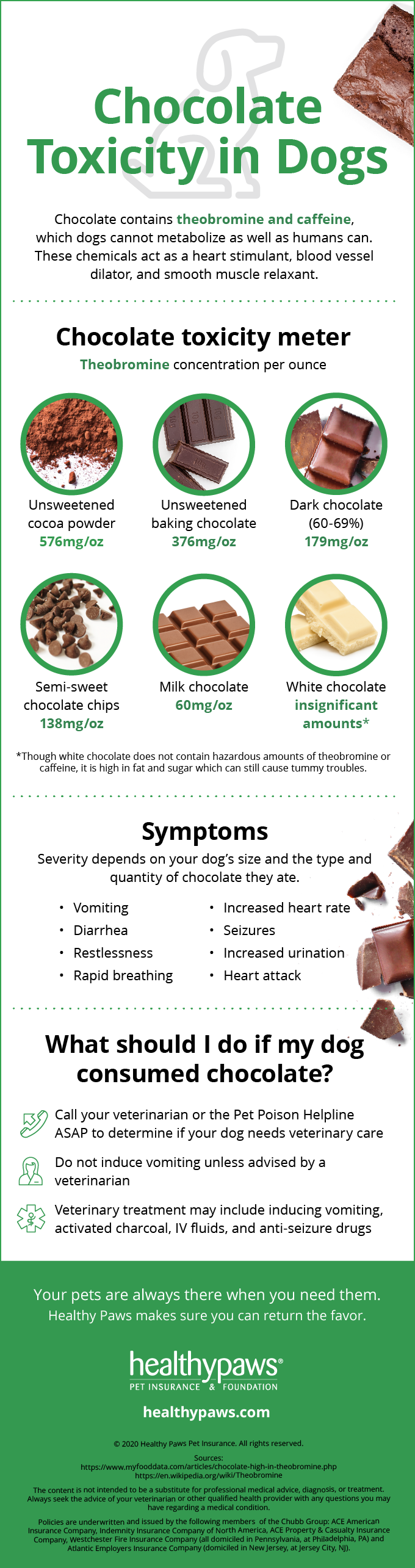 Infographic: Chocolate Toxicity in dogs