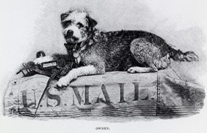 Owney, the mail dog