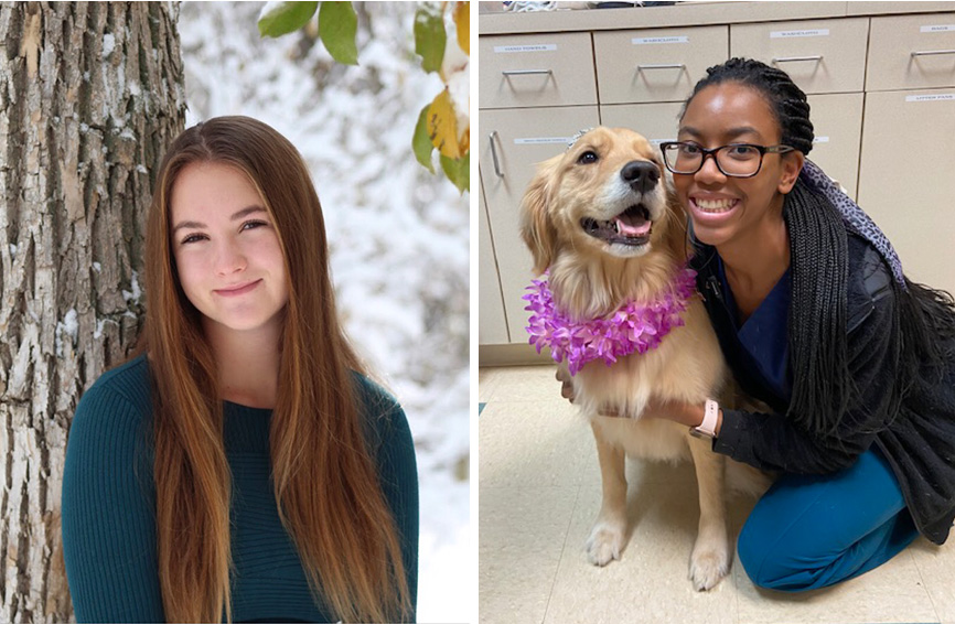 Healthy Paws Pet Insurance Announces Fall Scholarship ...