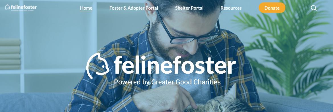 Feline Foster header