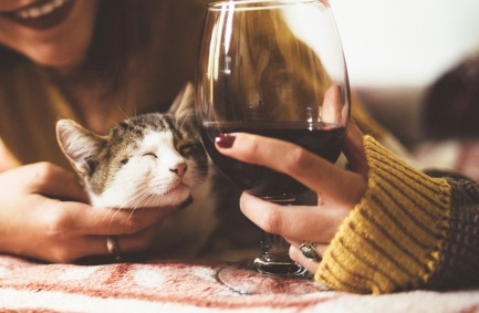 A cat and a glass of wine
