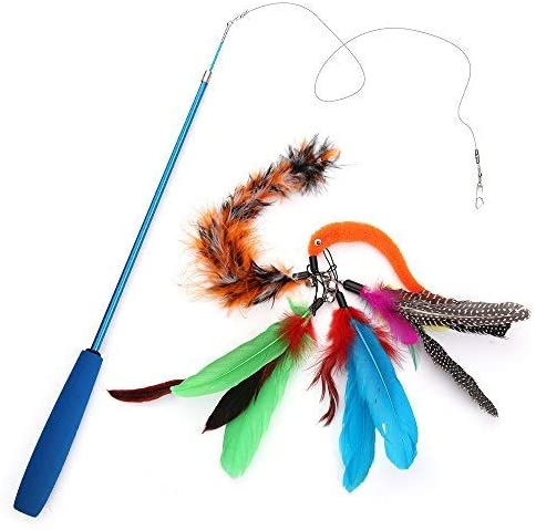 cat feather pole toy