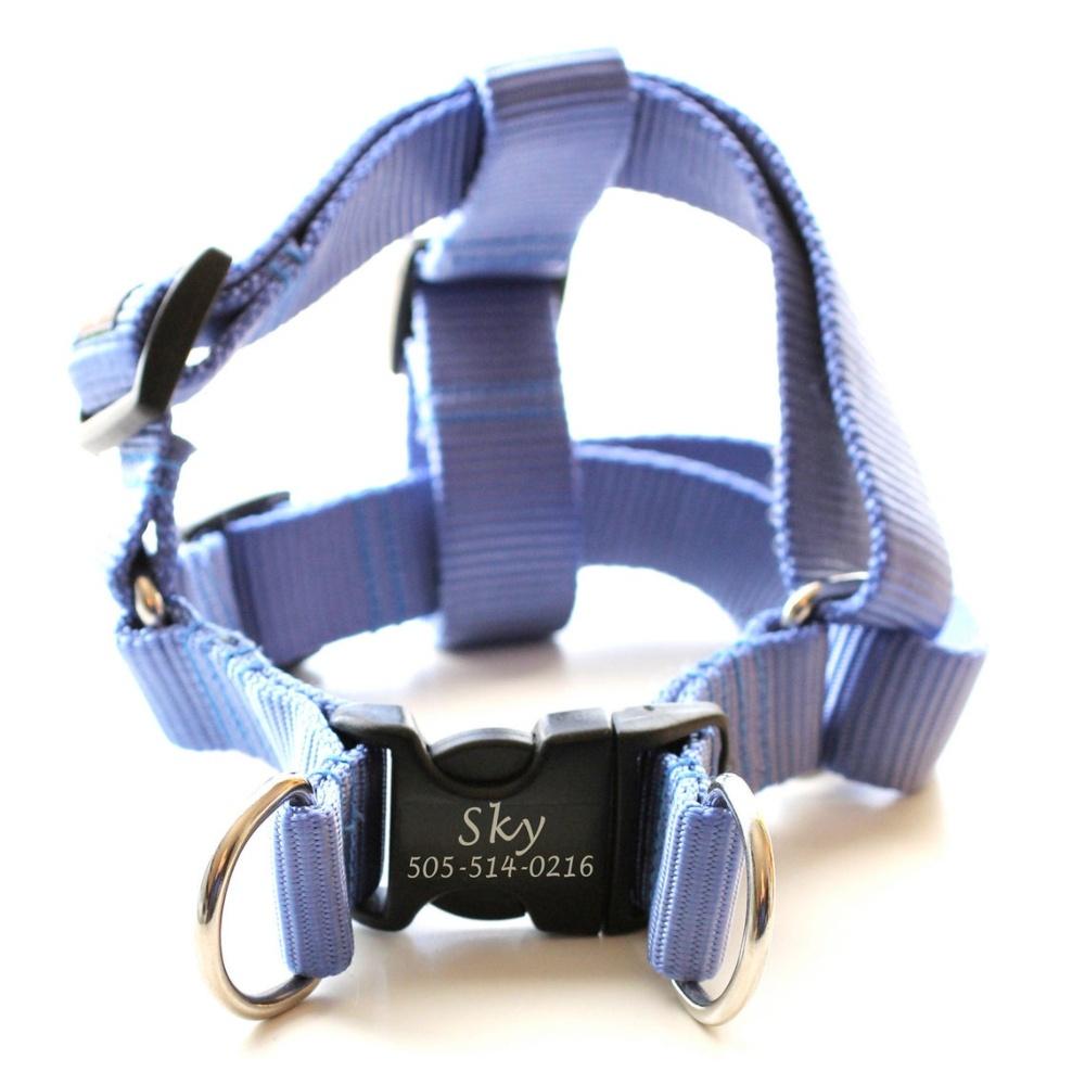 dog tag harness