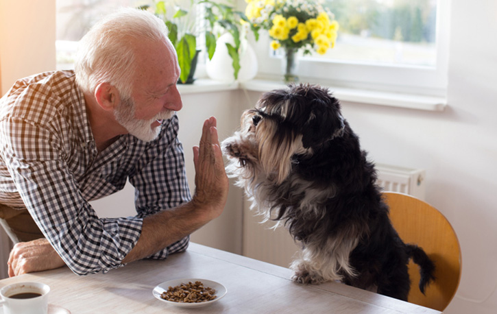 Older person with a dog