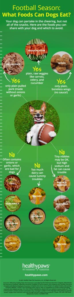football foods dogs can eat