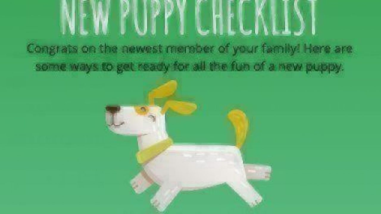 New Puppy Checklist Healthy Paws