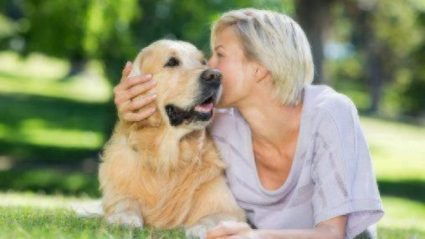 Is Pet Insurance Worth the Cost