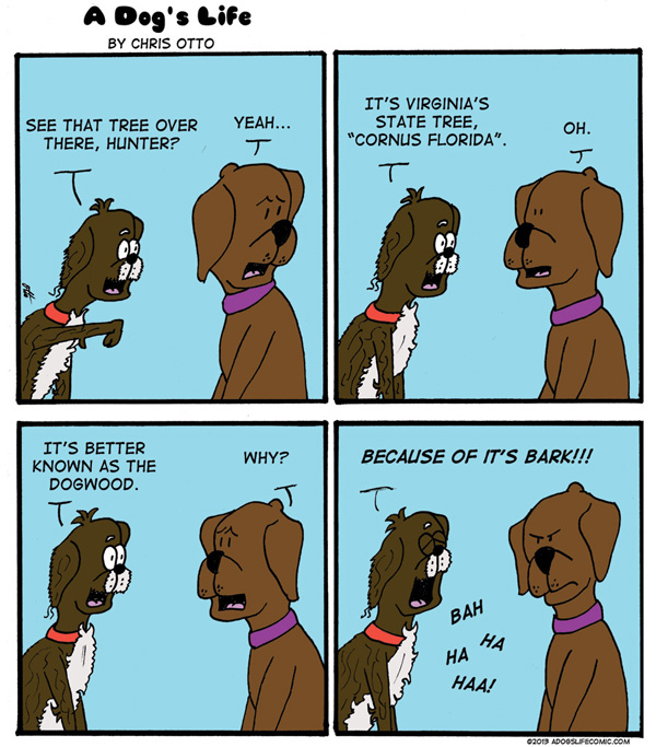 chris_otto_dog_comic